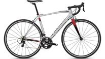 Buy Specialized Allez Comp Smartweld Road Bike 2016 Online at thetristore.com
