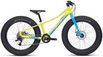 Buy Specialized Fatboy 24 2017 Online at thetristore.com