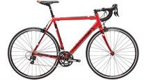 Buy Cannondale CAAD8 105 Road Bike 2016 Online at thetristore.com